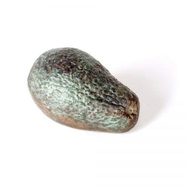 Bronze Avocado