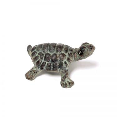 Bronze Small Turtle