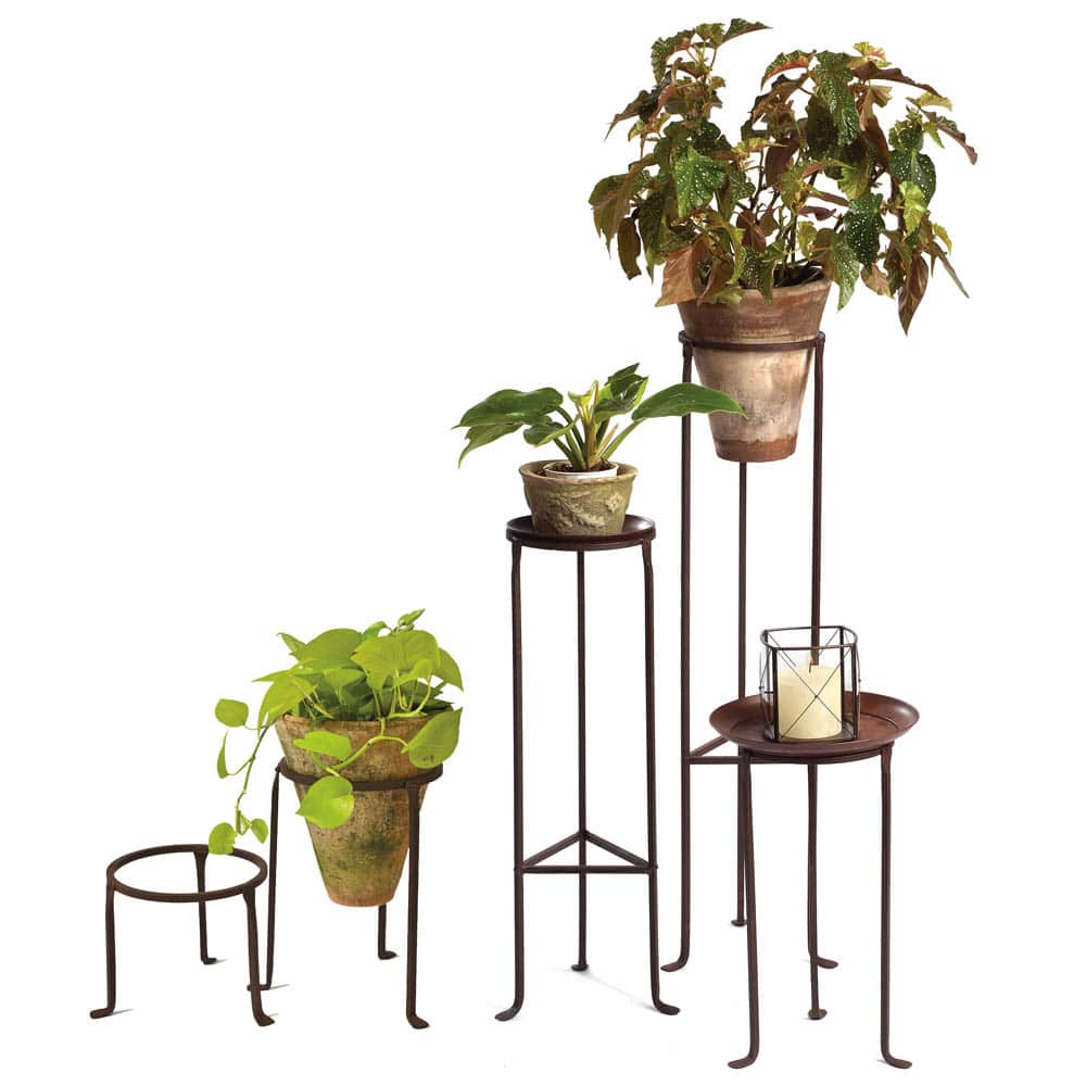 Iron Plant Stands 8 Diameter